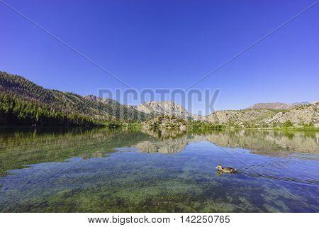 The Beautiful Gull Lake