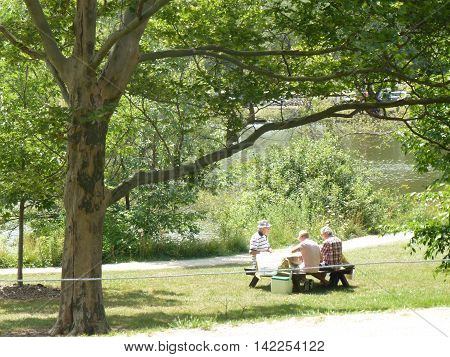 Canada, August 1, 2016, Stratford,ON, The picnic near the river