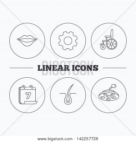 Trichology, surgical lamp and wheelchair icons. Lips linear sign. Flat cogwheel and calendar symbols. Linear icons in circle buttons. Vector