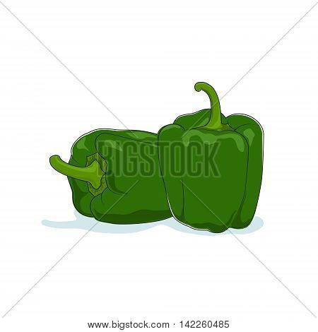 Green Bell Pepper Isolated on White Background, Vegetables Sweet Pepper, Capsicum ,Vector Illustration