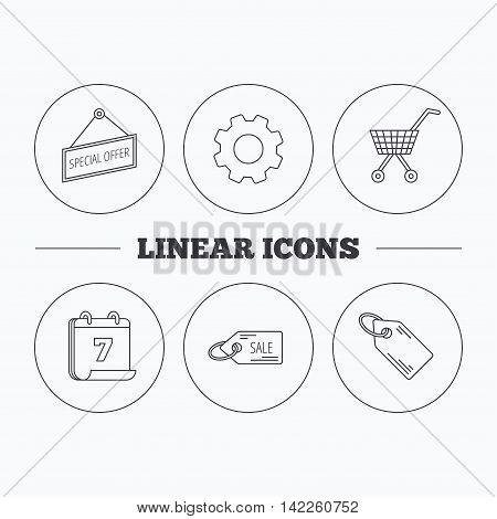 Shopping cart, price tag and sale coupon icons. Special offer label linear sign. Flat cogwheel and calendar symbols. Linear icons in circle buttons. Vector