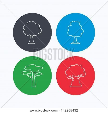 Pine tree, oak-tree icons. Forest trees linear signs. Linear icons on colored buttons. Flat web symbols. Vector