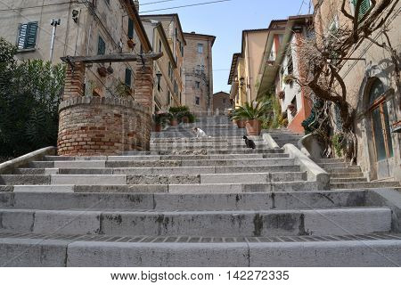 Stairs in Corinaldo (Italy) with dog and cat and a well