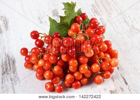 Bunch Of Red Viburnum With Leaves On Rustic Wooden Background