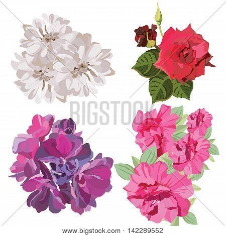 Spring Summer colorful Flower Set Vector illustration