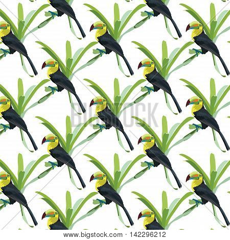Toucan birds sitting on a flower pattern Vector