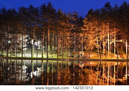 Reflection Of Trees On Pond