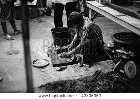 PrachuapkhirikhanThailand -June 05 2016: Unidentified old man gutting fish ready to sell in the thai traditional market Prachuapkhirikhan Province Thailand / high contrast black and white picture style