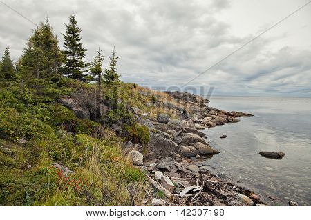 Coast of White sea in summer, northern Russia