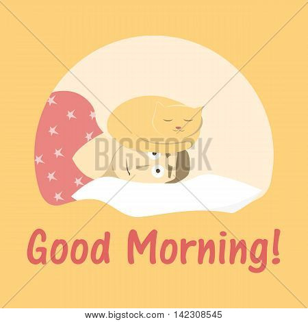 postcard good morning with amazed man and lying on him cat waking up