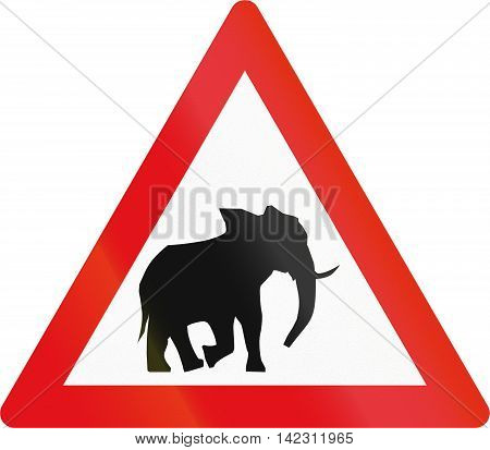 Road Sign Used In The African Country Of Botswana - Elephants
