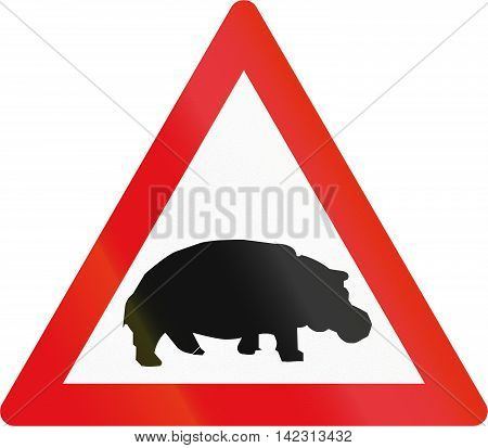 Road Sign Used In The African Country Of Botswana - Hippos