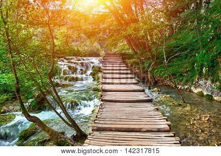Wooden Road Trail in Plitvice National Park Croatia