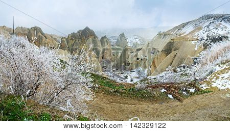 The hoarfrost on branches of the bush in the cold winter morning in Goreme Cappadocia Turkey.