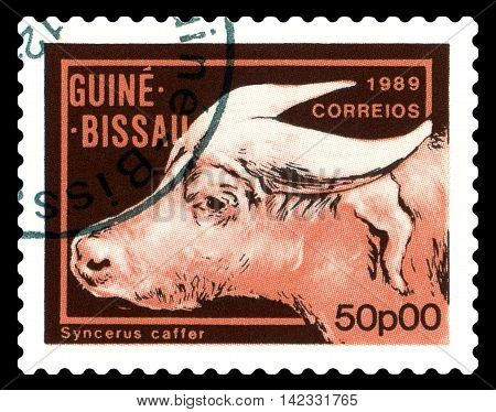 STAVROPOL RUSSIA - August 11 2016: A stamp printed by Guinea - Bissau shows African Buffalo circa 1989.