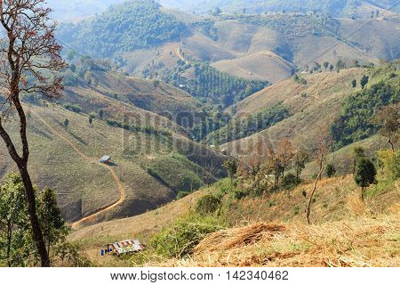 Agriculture area on high mountain with dried plantation