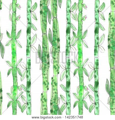 Seamless pattern with watercolor green bamboo painted on a white background