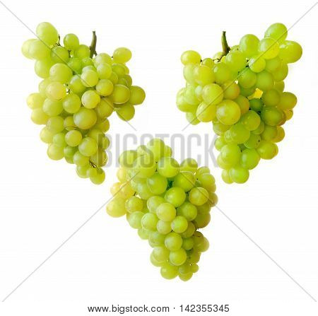 Green grape bunch isolated vine fruit nature berry healthy diet food vector. Cartoon fresh grapes bunch and dessert winery grapes bunch. Sweet grapes bunch, natural grapes bunch.