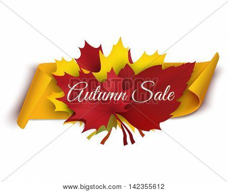 Autumn sale banner vector illustration. Colorful leaves with paper scroll banner. Vector illustration