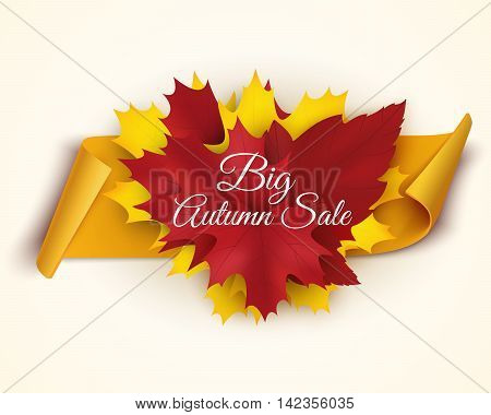Autumn sale banner vector illustration. Colorful leaves with paper scroll banner. Vector illustration