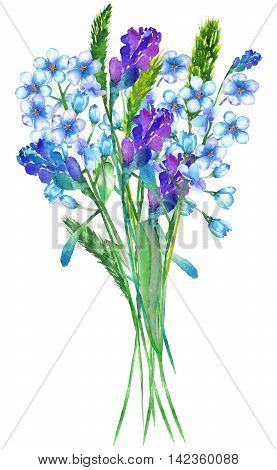 An illustration with an isolated bouquet of the beautiful watercolor blue forget-me-not flowers (Myosotis), lavender flowers and spikelets on a white background