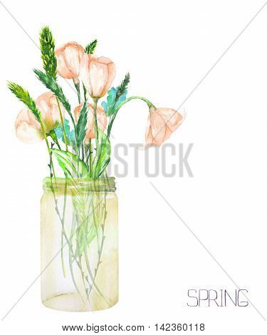 An image, illustration of a bouquet of the wildflowers (tender pink spring flowers and spikelets) in a glass jar, painted in a watercolor on a white background