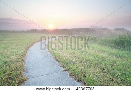 bike road on Dutch farmland at sunrise Holland