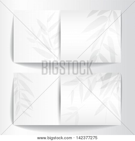 Banners with bamboo trees and leaves on white background. Vector illustration.