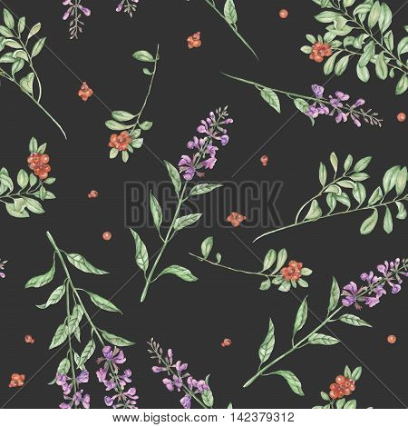 Seamless floral pattern with cowberry and salvia flowers, hand drawn in watercolor on a dark background