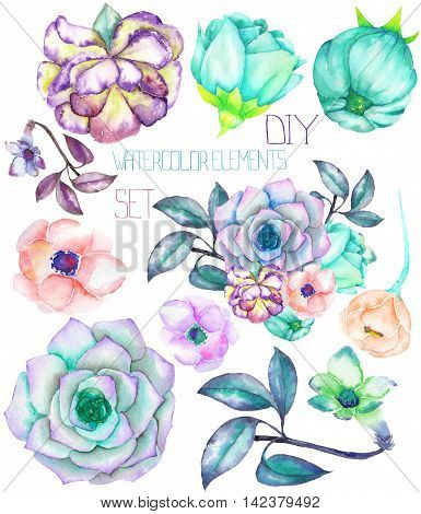 A set with the isolated watercolor floral elements: succulents, flowers, leaves and branches, hand-drawn on a white background, for self-compilation of the bouquets and ornaments