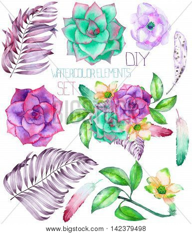 A set with the isolated watercolor floral elements: succulents, flowers, leaves and feathers, hand-drawn on a white background, for self-compilation of the bouquets and ornaments