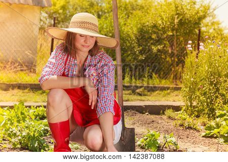 Mature woman wearing hat red rubber boots with gardening tool working in her backyard garden outdoor