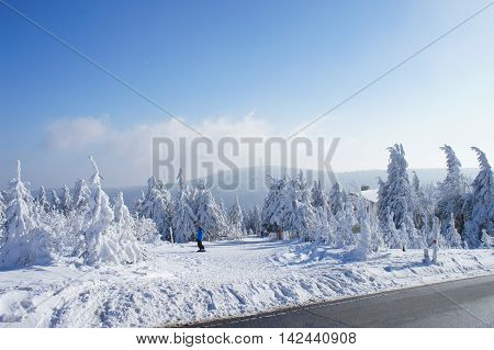Hiker on the Fichtelberg in the Erzgebirge in Germany, view to the Klinovec in Czech Republic, thick snowy spruces, blue sky and clouds