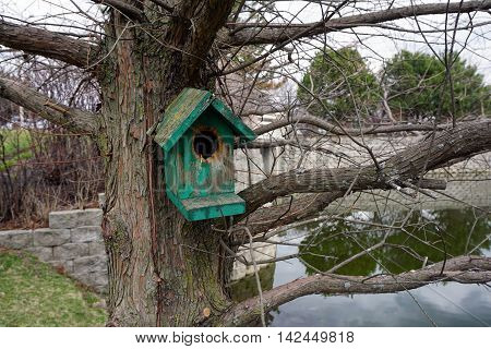 A birdhouse attached to a pine tree near a small lake in Joliet, Illinois.