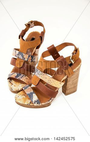 Womens open-toe sandals decorated snake skin isolated on white background.