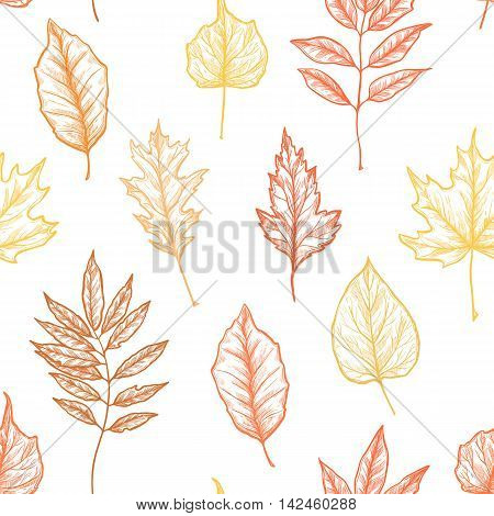 Hand Drawn Vector Illustrations. Seamless Pattern With Leaves. Forest Background