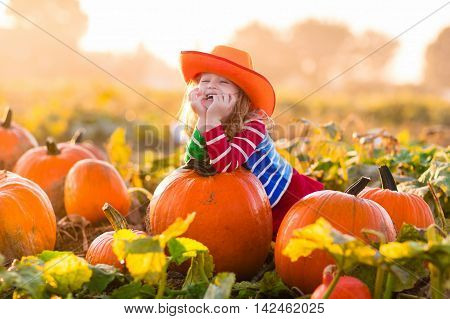 Little girl picking pumpkins on Halloween pumpkin patch. Child playing in field of squash. Kids pick ripe vegetables on a farm in Thanksgiving holiday season. Family with children having fun in autumn