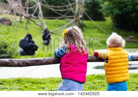 Two little kids boy and girl watch monkey show in the zoo on a cold autumn day. Children watching animals in safari park.