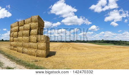 Stacked straw bales on a stubble field