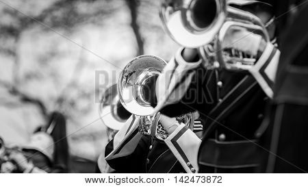 Band of musicians plays instruments in Black and White