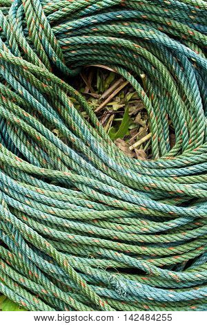 Roll bristly of green nylon rope in garden
