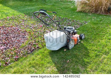 Cutting And Bagging Grass And Leaves In The Fall