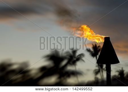 Blurred background of tiki torch with room for your type.