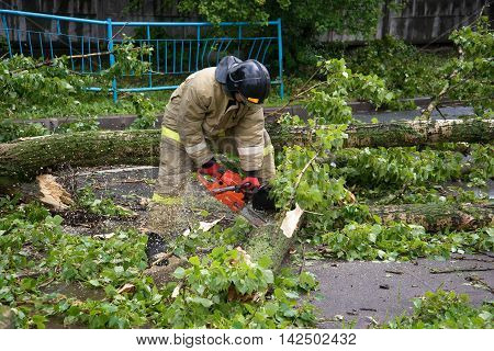 ST. PETERSBURG, RUSSIA - JUNE 16, 2016: Emergency workers sawing collapsed after a thunderstorm a tree