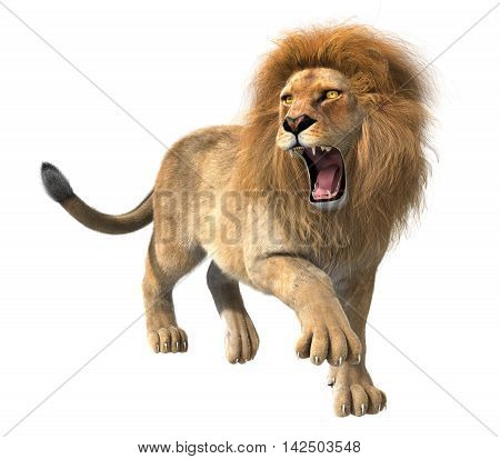 3d CG illustration of roaring lion isolated on white background