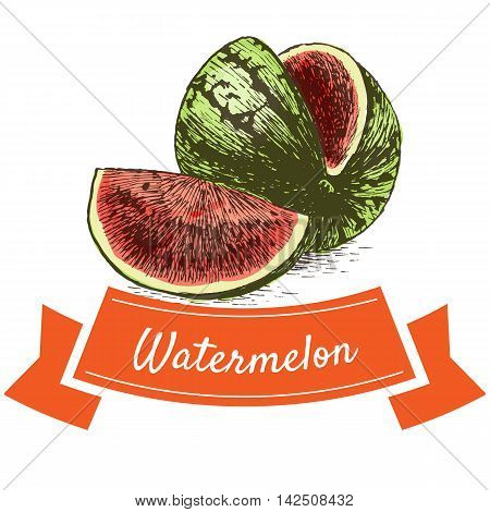 Vector illustration colorful set with watermelon. Illustration of fruits