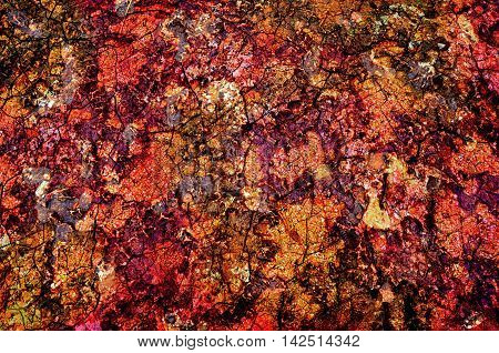 texture of old red and yellow spotted wall