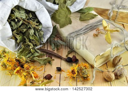 Healthcare and homeopathic still life with healing herbs, calendula flowers, dried leaves of mint and black currant, old book on wooden planks