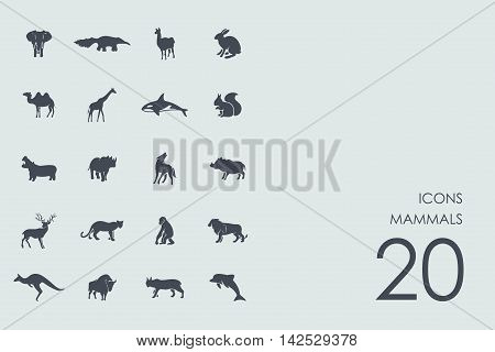 mammals vector set of modern simple icons
