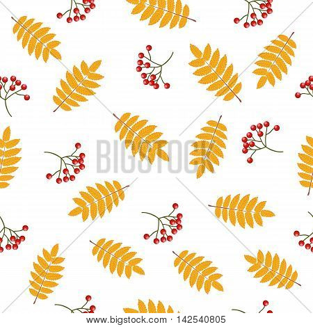 Autumn seamless pattern with rowan leaves and berries. Vector illustration on white background.